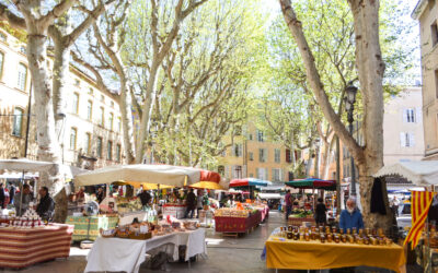 A year with my family in Aix en Provence